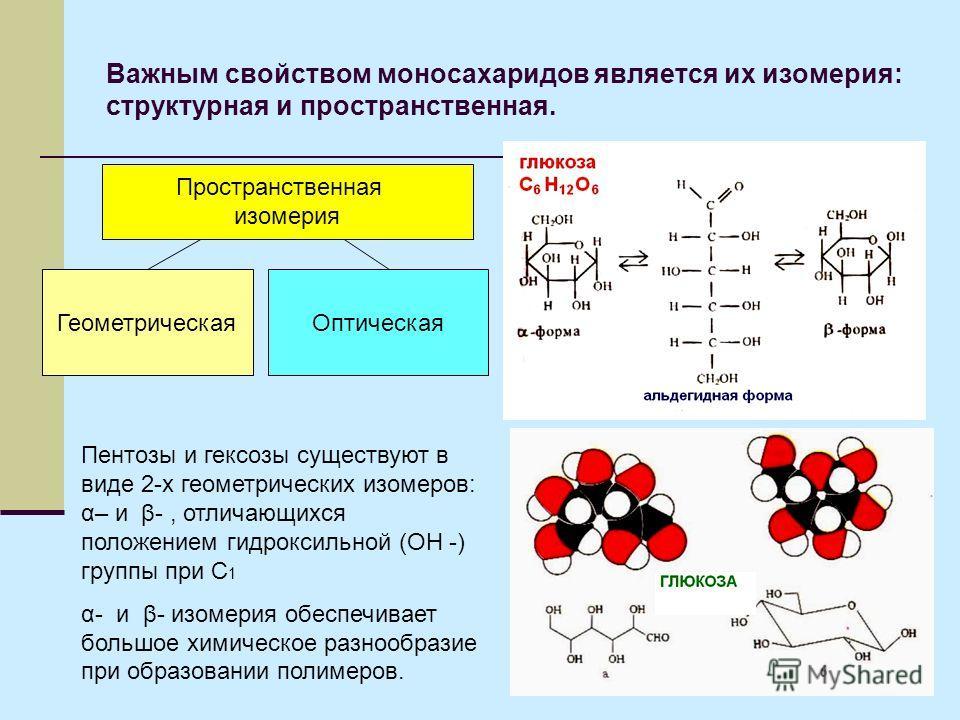 Важным свойством моносахаридов является их изомерия: структурная и пространственная. Пространственная изомерия ГеометрическаяОптическая Пентозы и гексозы существуют в виде 2-х геометрических изомеров: α– и β-, отличающихся положением гидроксильной (О
