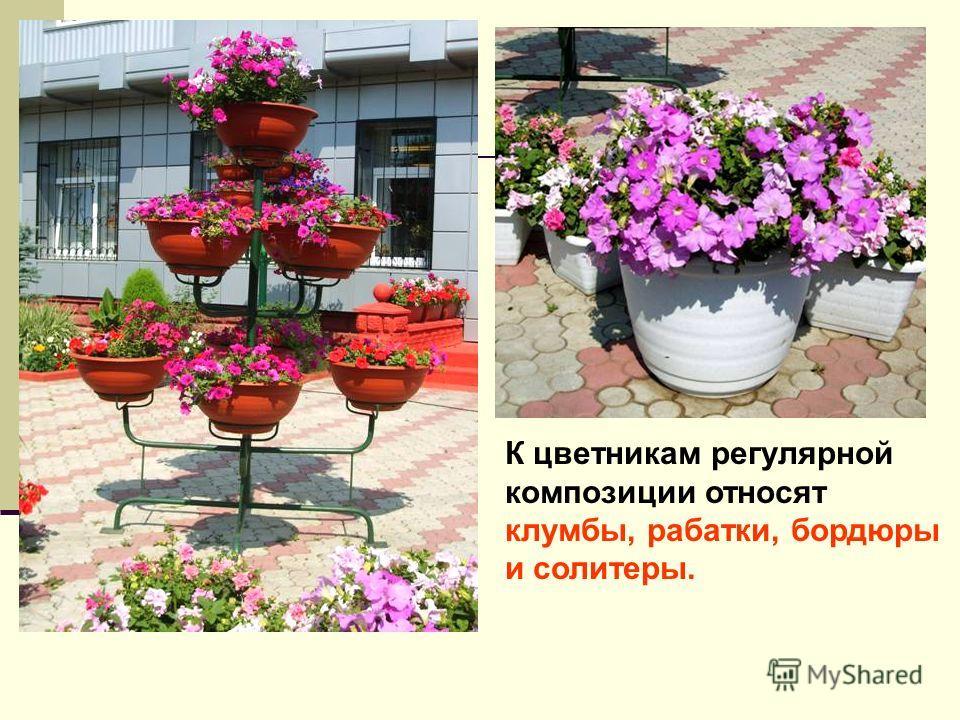 К цветникам регулярной композиции относят клумбы, рабатки, бордюры и солитеры.