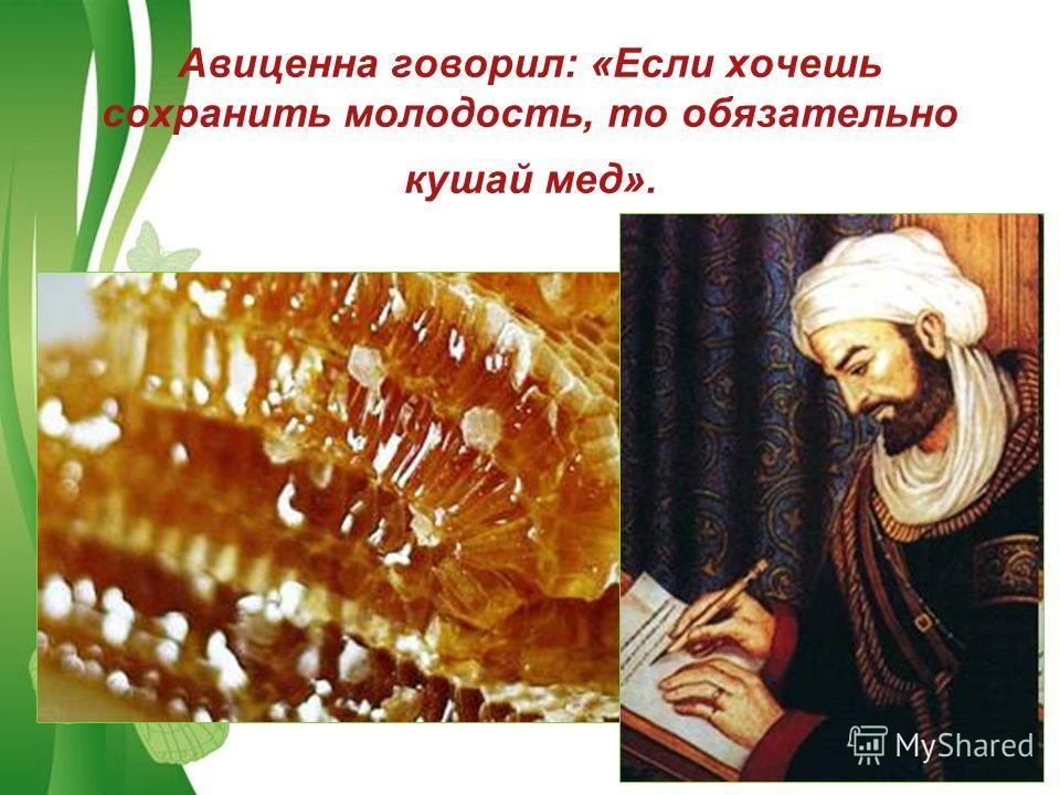 Free Powerpoint TemplatesPage 12 Авиценна говорил: «Если хочешь сохранить молодость, то обязательно кушай мед».