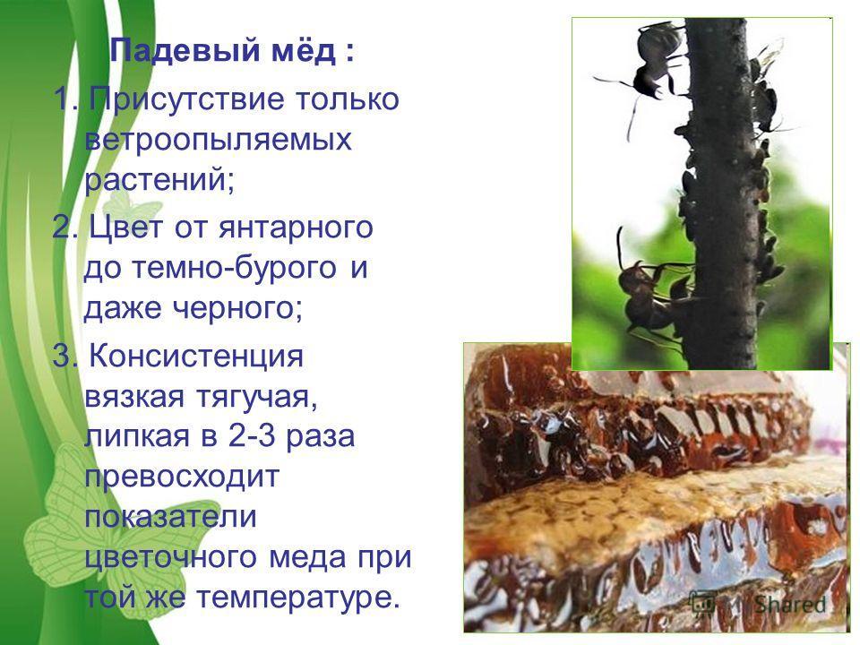 Free Powerpoint TemplatesPage 16 Падевый мёд : 1. Присутствие только ветроопыляемых растений; 2. Цвет от янтарного до темно-бурого и даже черного; 3. Консистенция вязкая тягучая, липкая в 2-3 раза превосходит показатели цветочного меда при той же тем