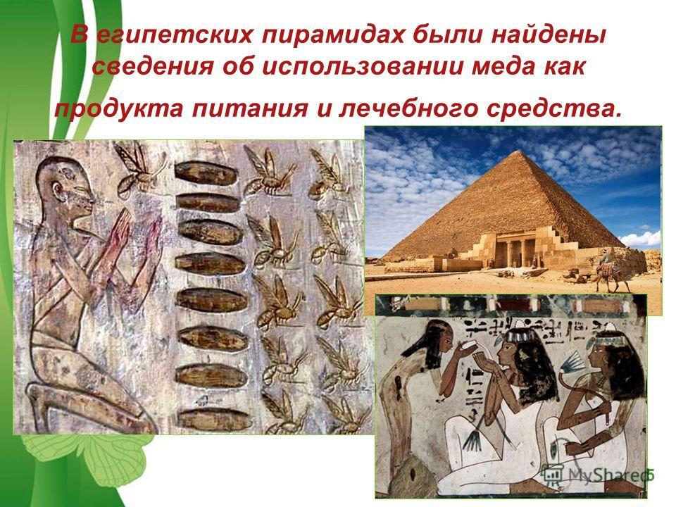 Free Powerpoint TemplatesPage 5 В египетских пирамидах были найдены сведения об использовании меда как продукта питания и лечебного средства.