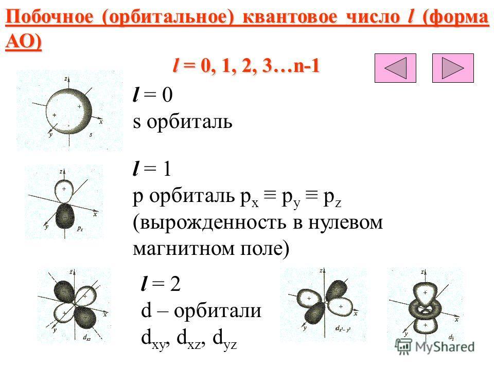 Побочное (орбитальное) квантовое число l (форма АО) l = 0, 1, 2, 3…n-1 l = 0 s орбиталь l = 1 p орбиталь р х р y p z (вырожденность в нулевом магнитном поле) l = 2 d – орбитали d xy, d xz, d yz