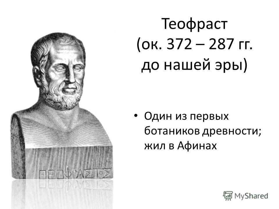 Теофраст (ок. 372 – 287 гг. до нашей эры) Один из первых ботаников древности; жил в Афинах