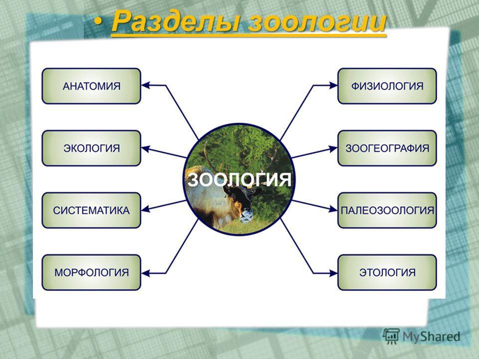 Разделы зоологииРазделы зоологии