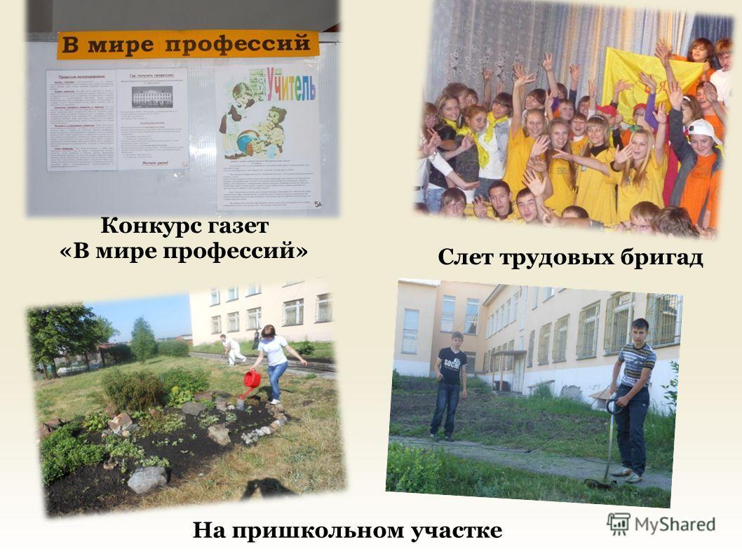 На пришкольном участке Слет трудовых бригад Конкурс газет «В мире профессий»