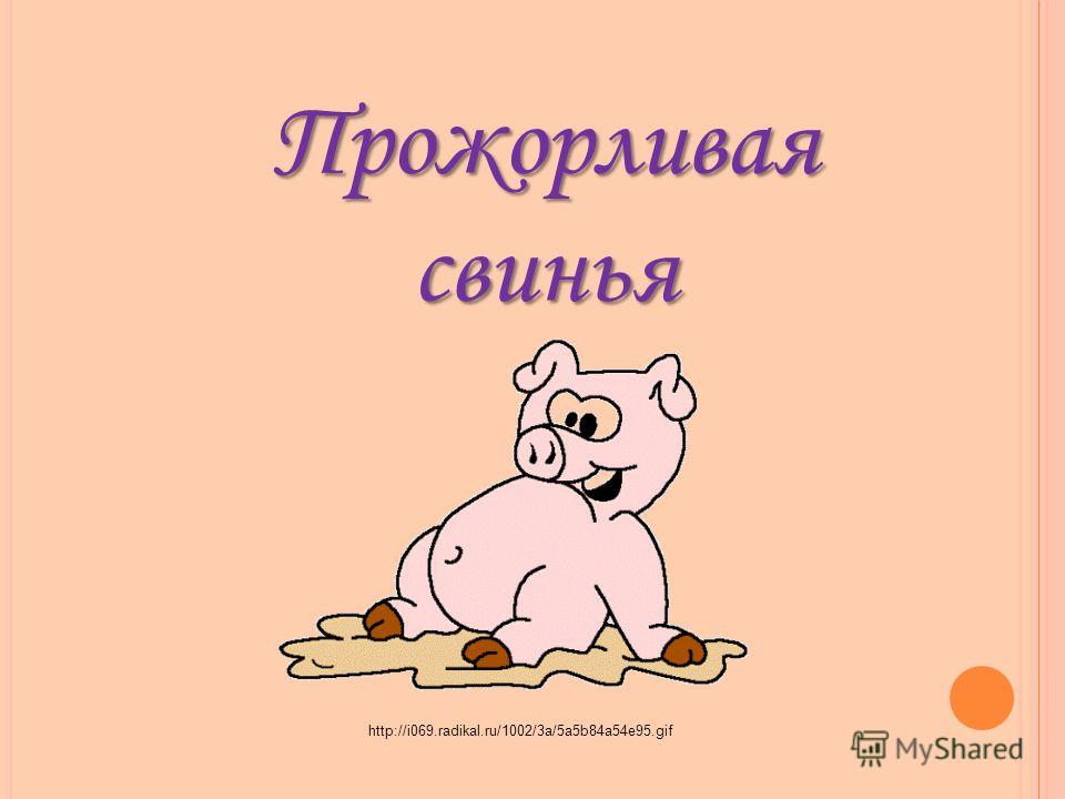 Прожорливая свинья http://i069.radikal.ru/1002/3a/5a5b84a54e95.gif