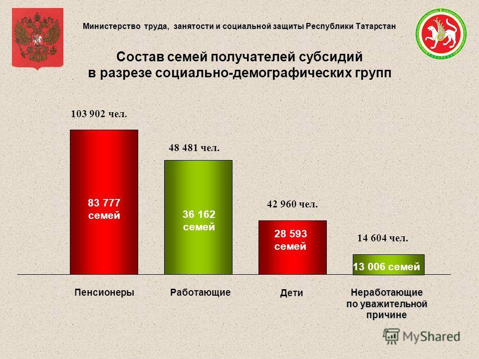 Министерство труда, занятости и социальной защиты Республики Татарстан 14 604 чел. Состав семей получателей субсидий в разрезе социально-демографических групп Работающие Дети 83 777 семей 103 902 чел. 28 593 семей 42 960 чел. 36 162 семей 48 481 чел.