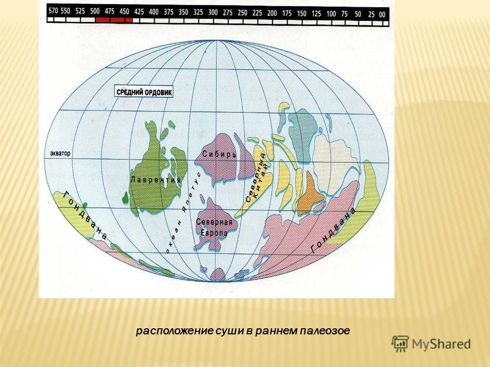 расположение суши в раннем палеозое