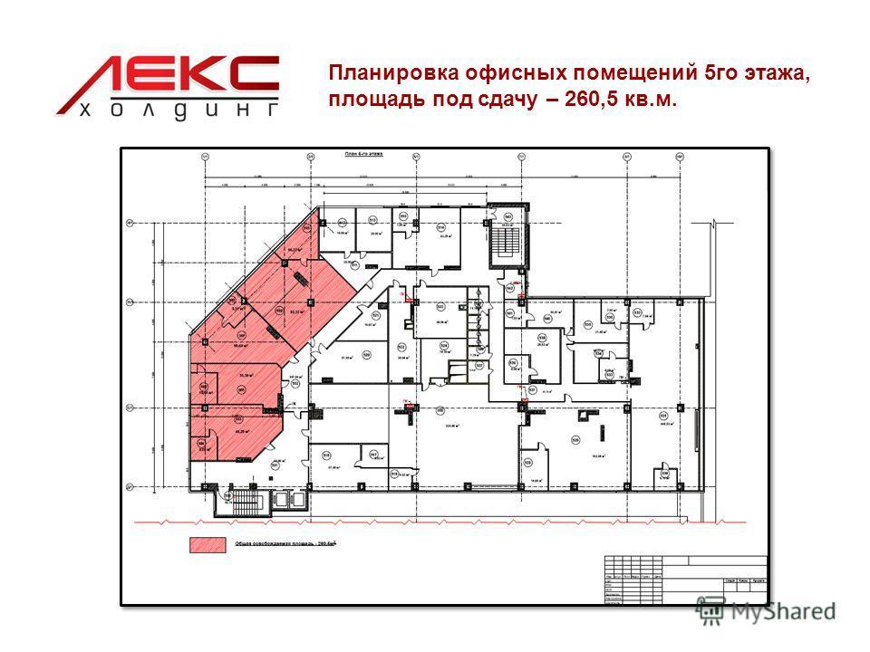 Планировка офисных помещений 5го этажа, площадь под сдачу – 260,5 кв.м.