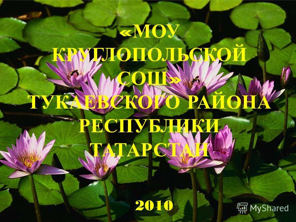 « МОУ КРУГЛОПОЛЬСКОЙ СОШ » ТУКАЕВСКОГО РАЙОНА РЕСПУБЛИКИ ТАТАРСТАН 2010