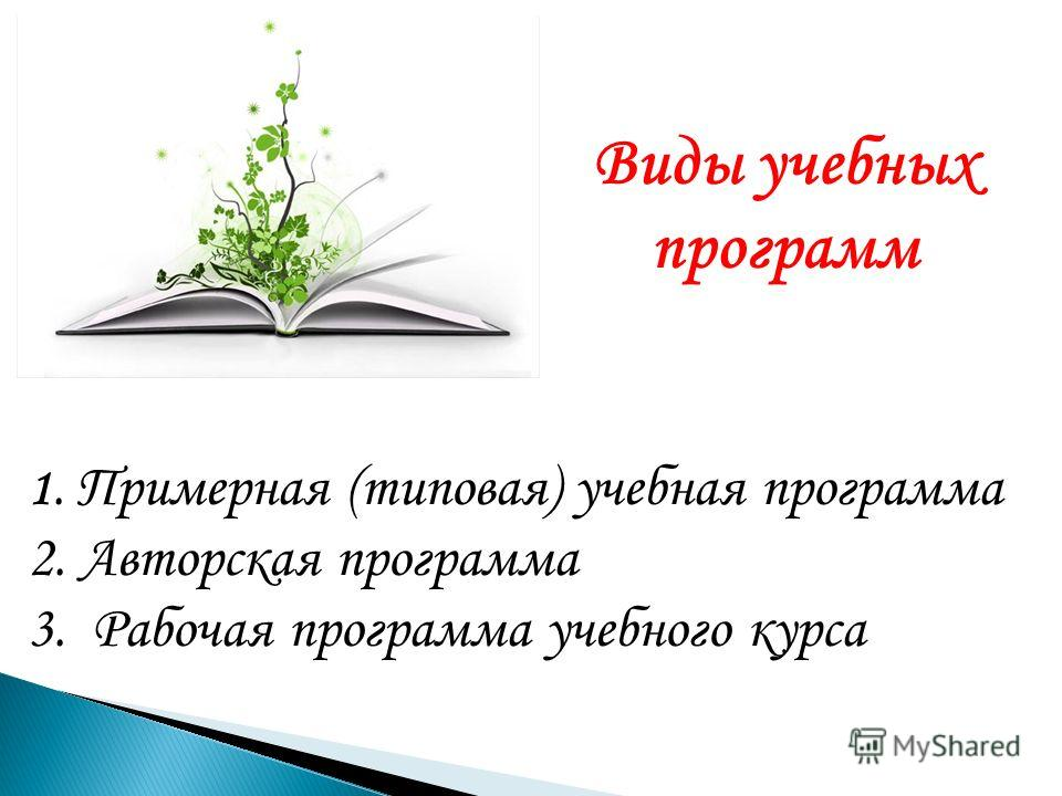 Виды учебных программ 1. Примерная (типовая) учебная программа 2. Авторская программа 3. Рабочая программа учебного курса