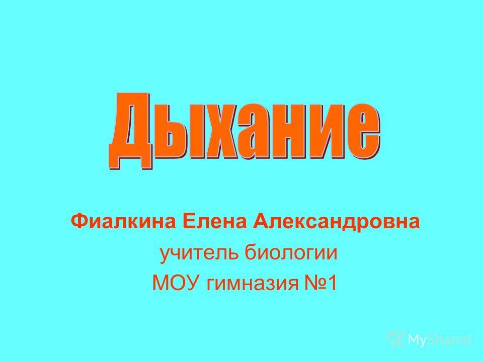 Фиалкина Елена Александровна учитель биологии МОУ гимназия 1