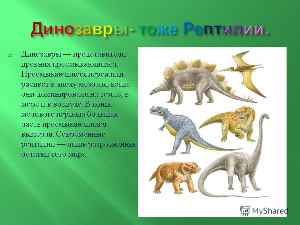Динозавры представители древних пресмыкающихся. Пресмыкающиеся пережили расцвет в эпоху мезозоя, когда они доминировали на земле, в море и в воздухе. В конце мелового периода большая часть пресмыкающихся вымерла. Современные рептилии лишь разрозненны