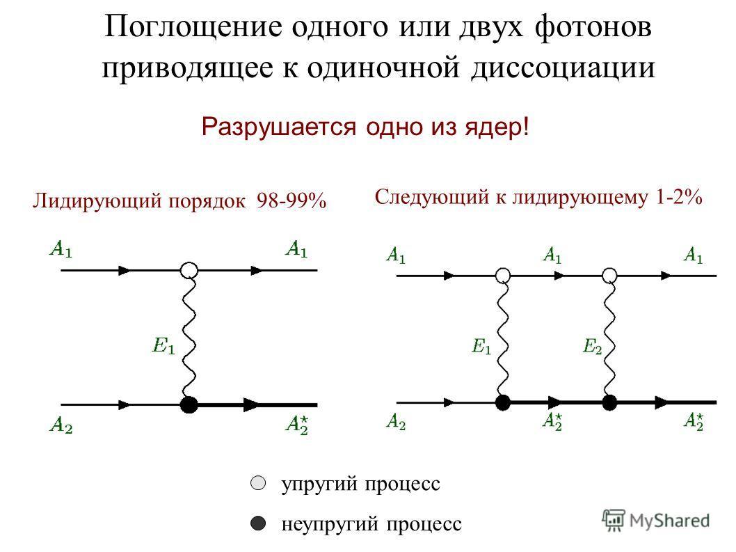 Поглощение одного или двух фотонов приводящее к одиночной диссоциации Следующий к лидирующему 1-2% Лидирующий порядок 98-99% упругий процесс неупругий процесс Разрушается одно из ядер!