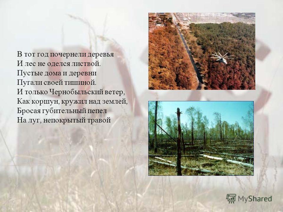 В тот год почернели деревья И лес не оделся листвой. Пустые дома и деревни Пугали своей тишиной. И только Чернобыльский ветер, Как коршун, кружил над землей, Бросая губительный пепел На луг, непокрытый травой