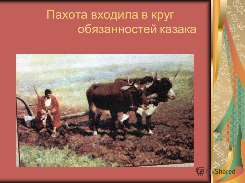 Пахота входила в круг обязанностей казака
