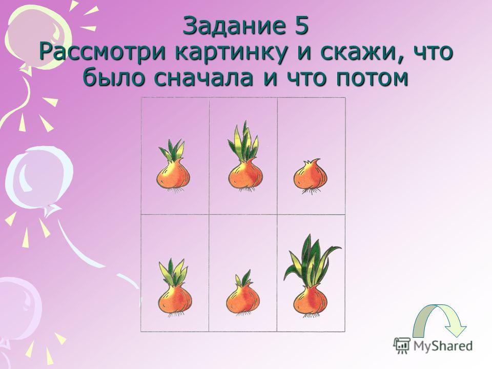 Задание 5 Рассмотри картинку и скажи, что было сначала и что потом