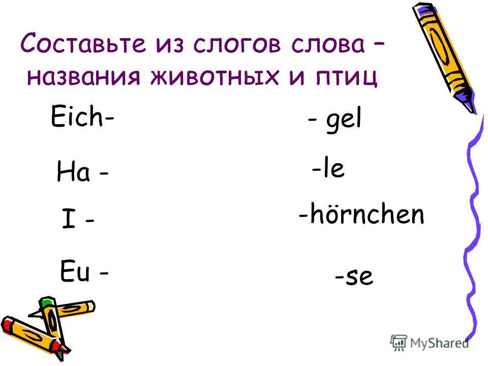 Cоставьте из слогов слова – названия животных и птиц Eich- Ha - I - Eu - - gel -le -hörnchen -se