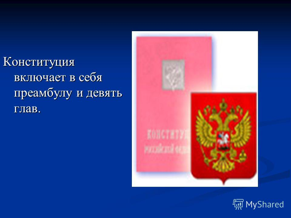 Конституция включает в себя преамбулу и девять глав.