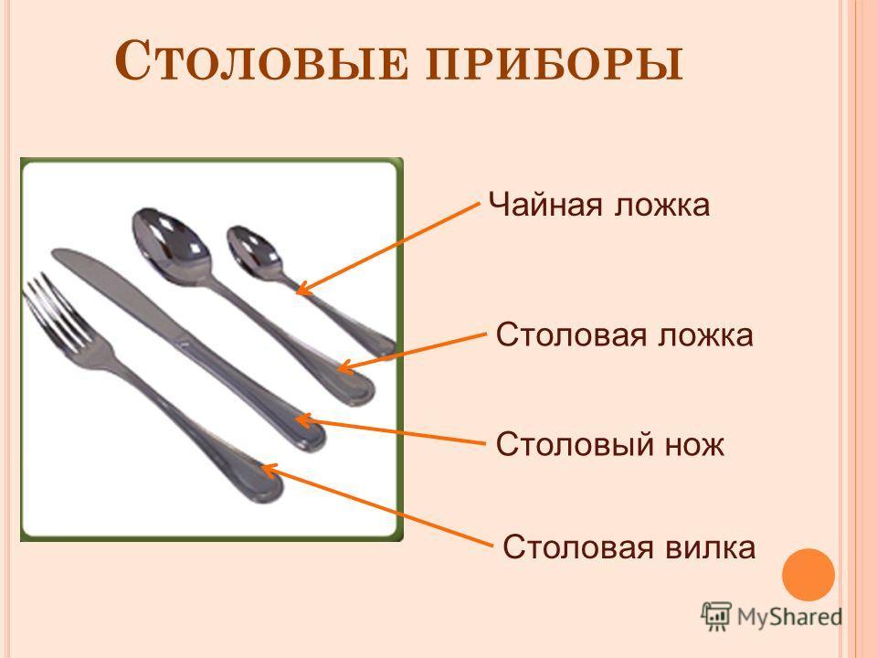 С ТОЛОВЫЕ ПРИБОРЫ Чайная ложка Столовая ложка Столовый нож Столовая вилка