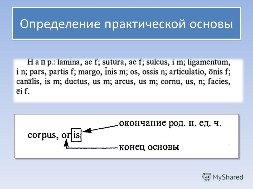Определение практической основы