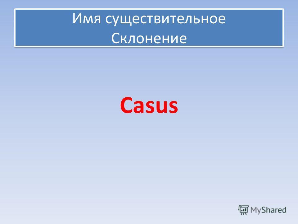Имя существительное Склонение Casus