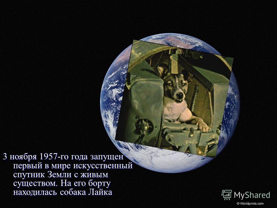 3 ноября 1957-го года запущен первый в мире искусственный спутник Земли с живым существом. На его борту находилась собака Лайка