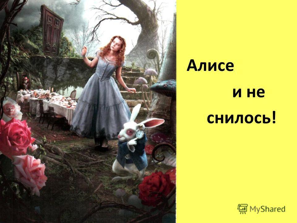 Алисе и не снилось!
