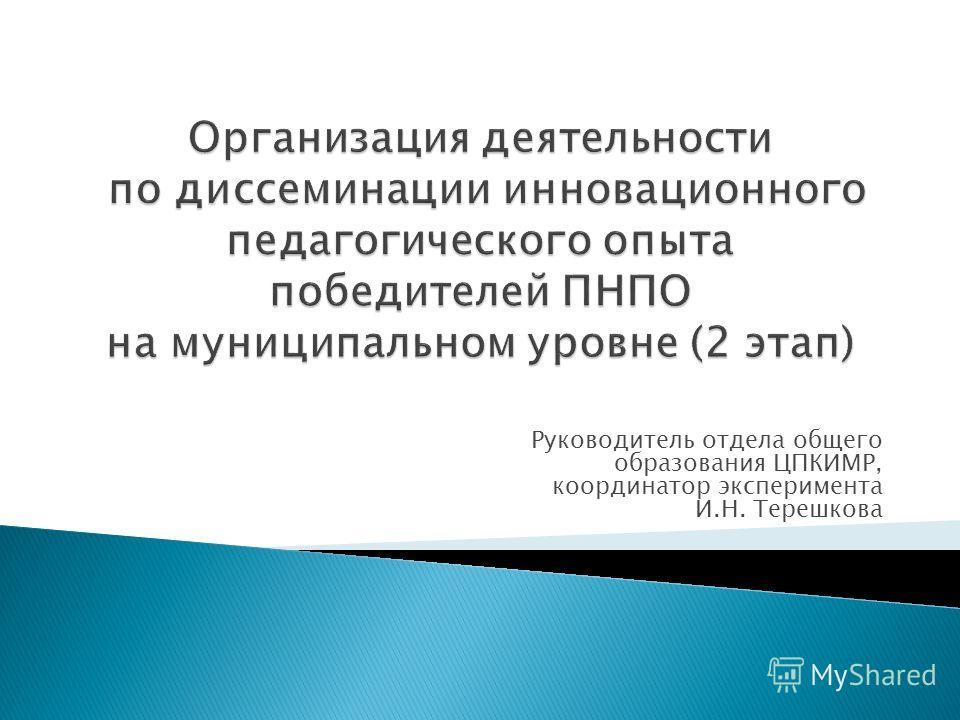 Руководитель отдела общего образования ЦПКИМР, координатор эксперимента И.Н. Терешкова