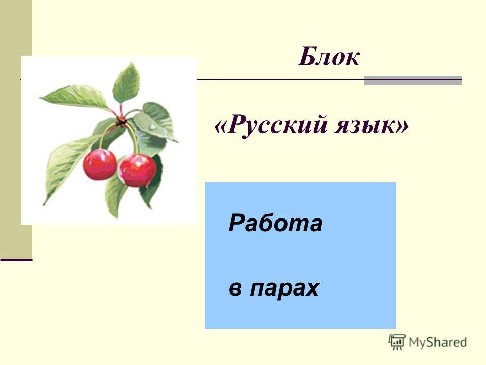 Блок «Русский язык» Работа в парах