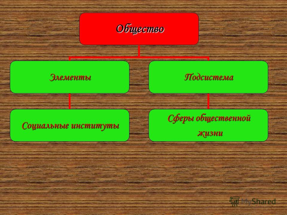 Общество Элементы Социальные институты Подсистема Сферы общественной жизни жизни