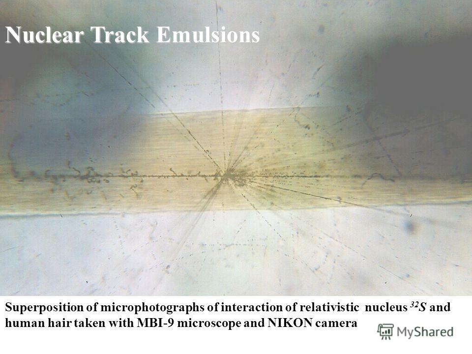 Superposition of microphotographs of interaction of relativistic nucleus 32 S and human hair taken with MBI-9 microscope and NIKON camera Nuclear Track Emulsions