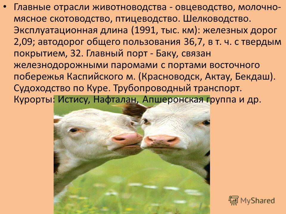 Главные отрасли животноводства - овцеводство, молочно- мясное скотоводство, птицеводство. Шелководство. Эксплуатационная длина (1991, тыс. км): железных дорог 2,09; автодорог общего пользования 36,7, в т. ч. с твердым покрытием, 32. Главный порт - Ба