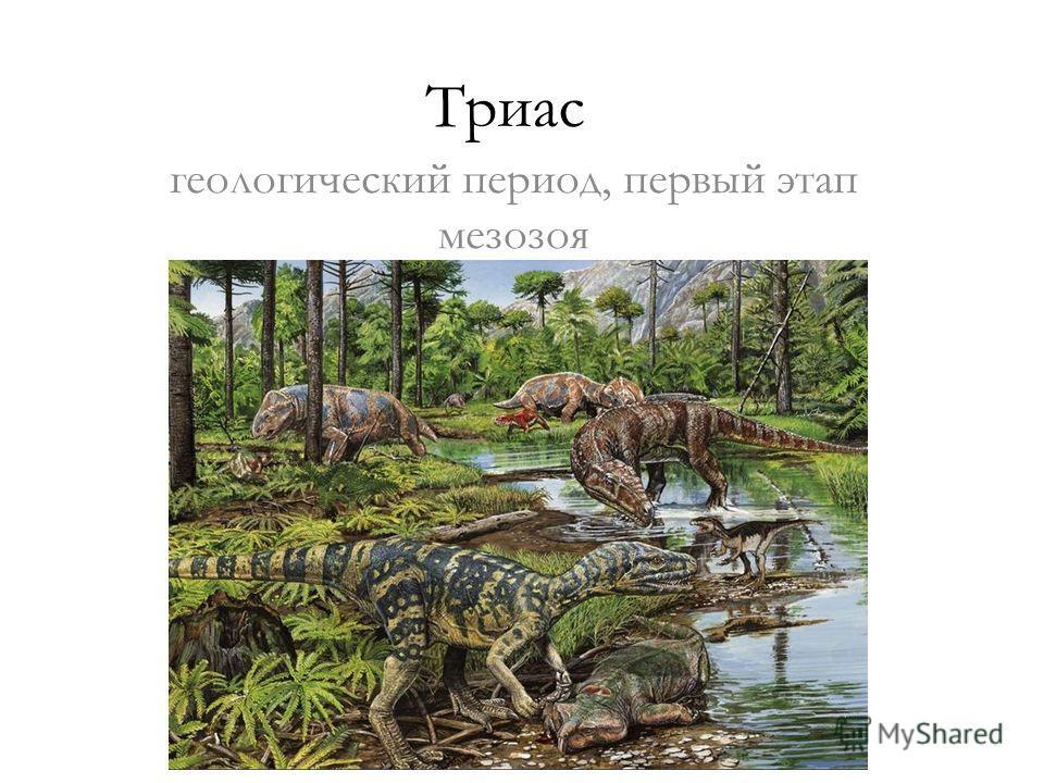 Триас геологический период, первый этап мезозоя