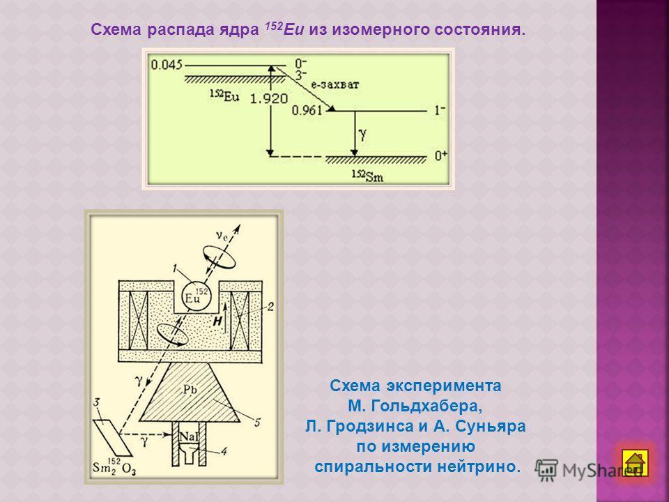 Схема эксперимента М. Гольдхабера, Л. Гродзинса и А. Суньяра по измерению спиральности нейтрино. Схема распада ядра 152 Eu из изомерного состояния.