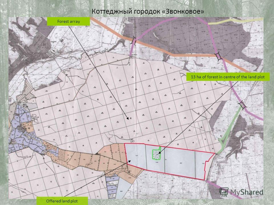 Offered land plot Forest array 13 ha of forest in centre of the land plot Коттеджный городок «Звонковое»