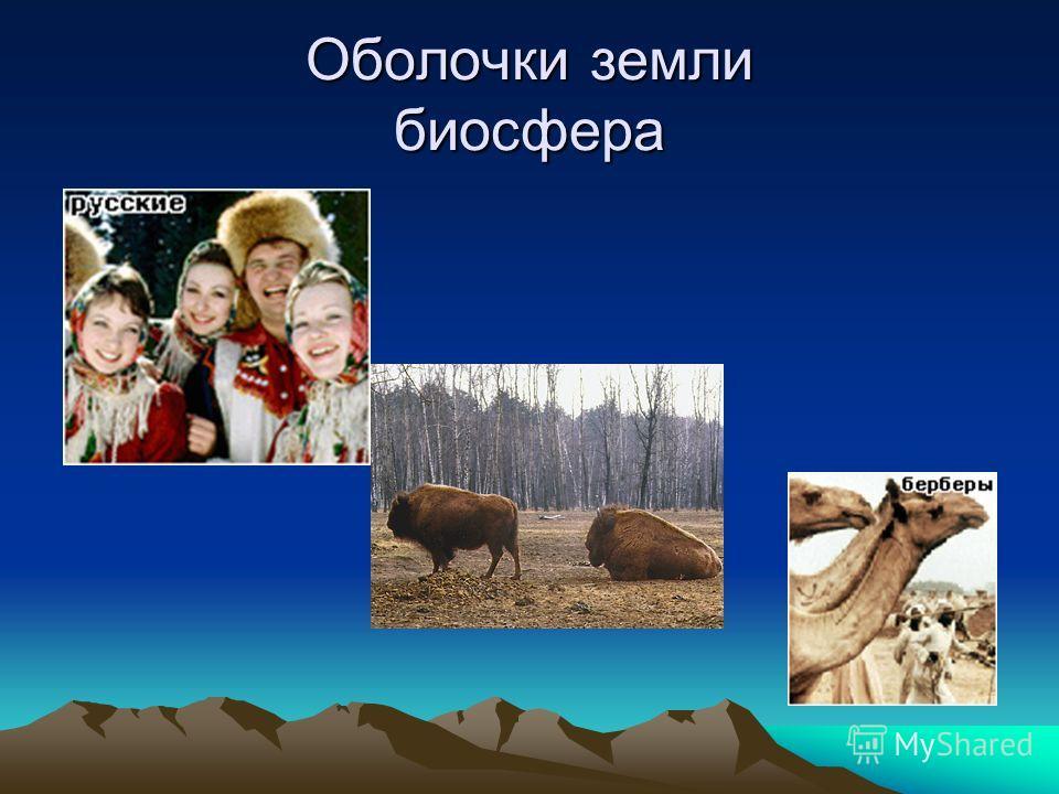 Оболочки земли биосфера