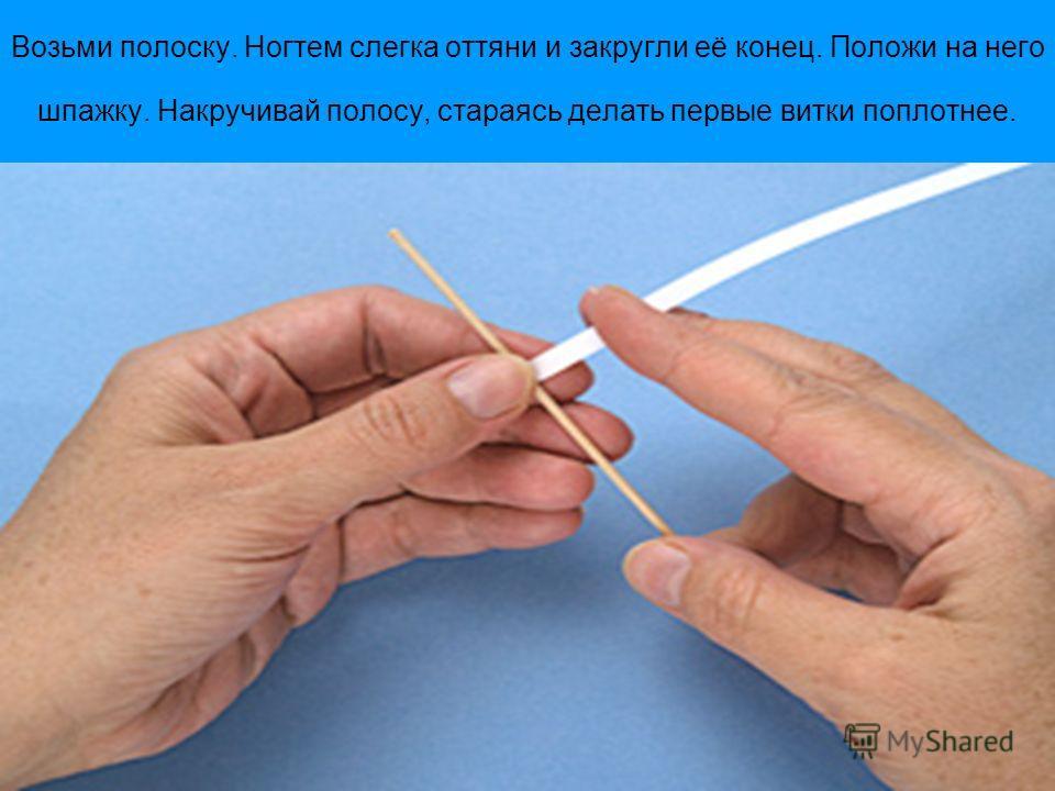 Возьми полоску. Ногтем слегка оттяни и закругли её конец. Положи на него шпажку. Накручивай полосу, стараясь делать первые витки поплотнее.