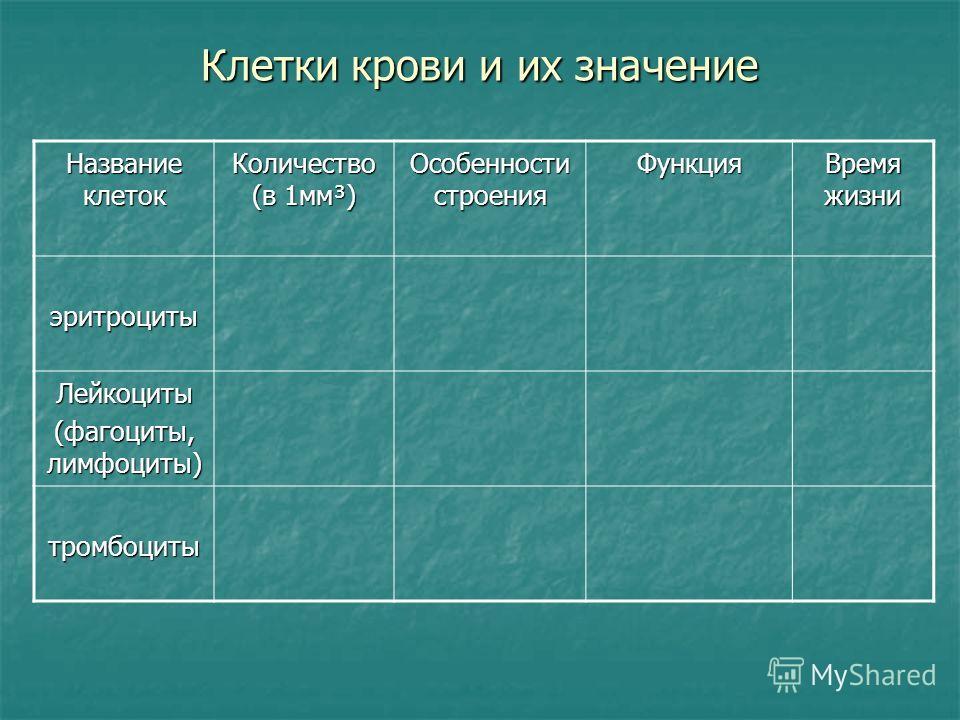 Клетки крови и их значение Название клеток Количество (в 1мм³) Особенности строения Функция Время жизни эритроциты Лейкоциты (фагоциты, лимфоциты) тромбоциты