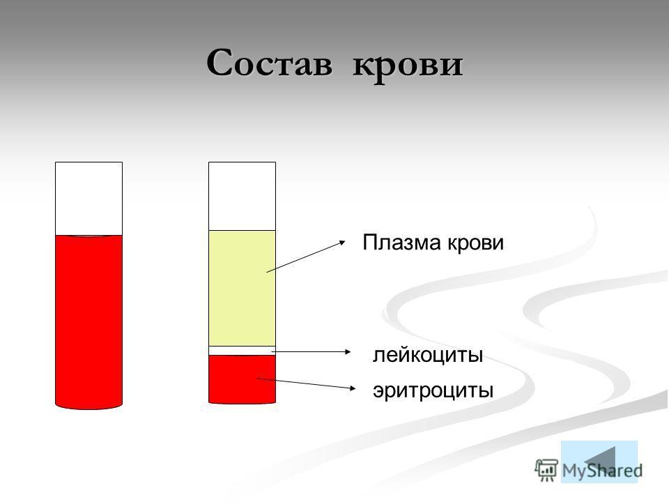Состав крови Плазма крови лейкоциты эритроциты