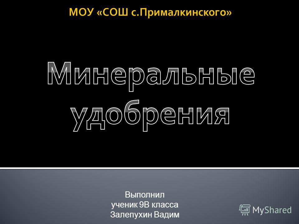 Выполнил ученик 9В класса Залепухин Вадим