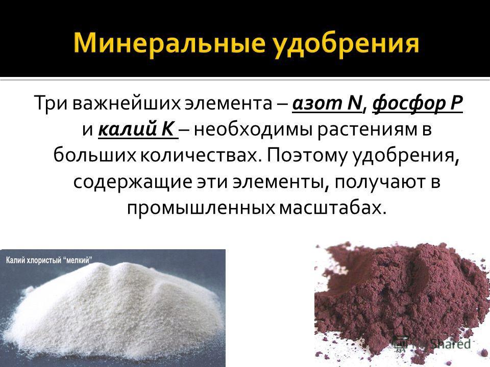 Три важнейших элемента – азот N, фосфор P и калий K – необходимы растениям в больших количествах. Поэтому удобрения, содержащие эти элементы, получают в промышленных масштабах.