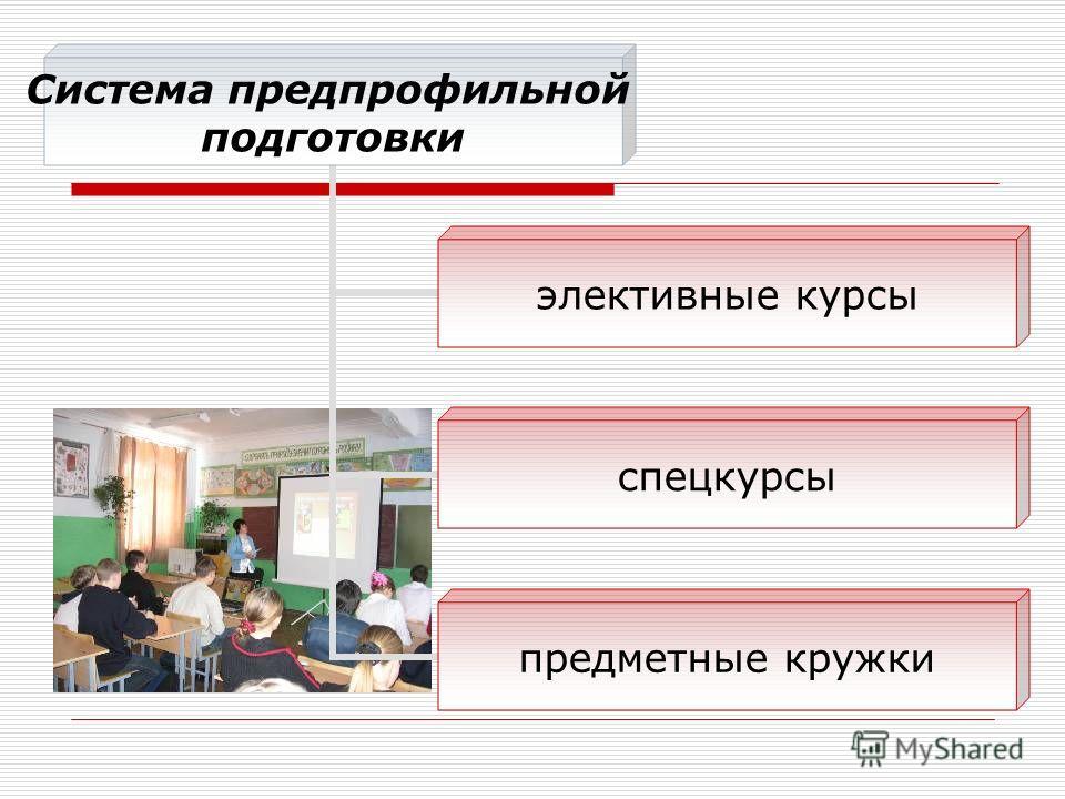 Система предпрофильной подготовки элективные курсы спецкурсы предметные кружки