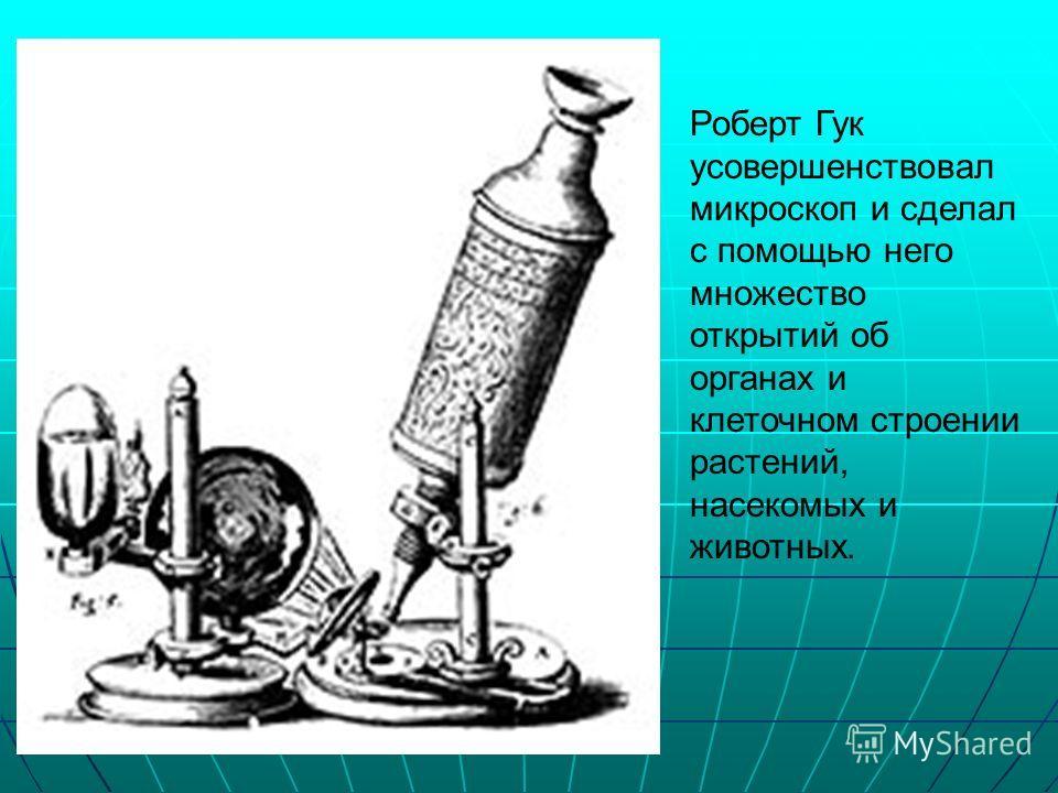 Роберт Гук усовершенствовал микроскоп и сделал с помощью него множество открытий об органах и клеточном строении растений, насекомых и животных.