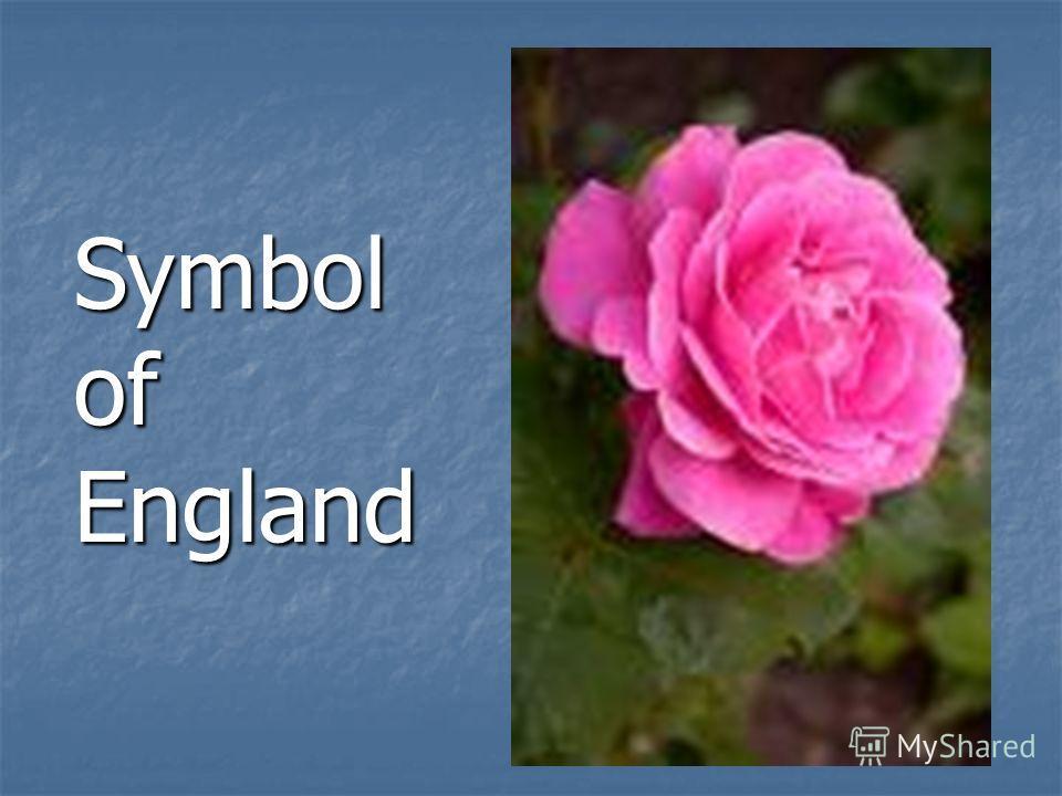 Symbol of England