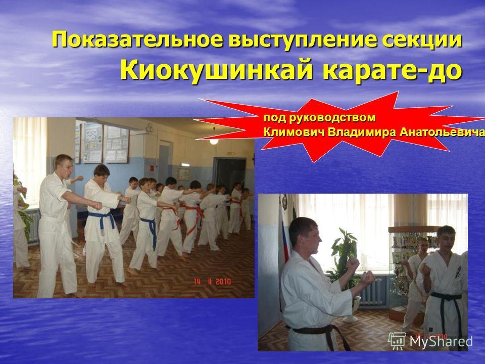 Показательное выступление секции Киокушинкай карате-до под руководством Климович Владимира Анатольевича