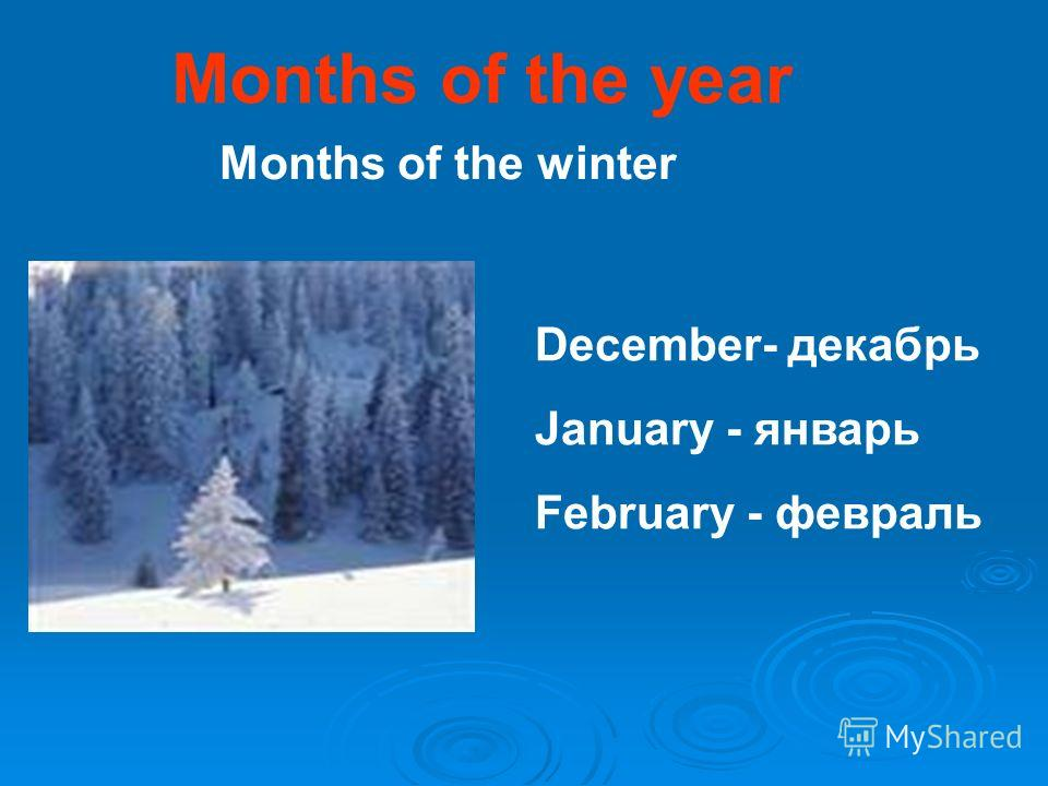 Months of the year December- декабрь January - январь February - февраль Months of the winter