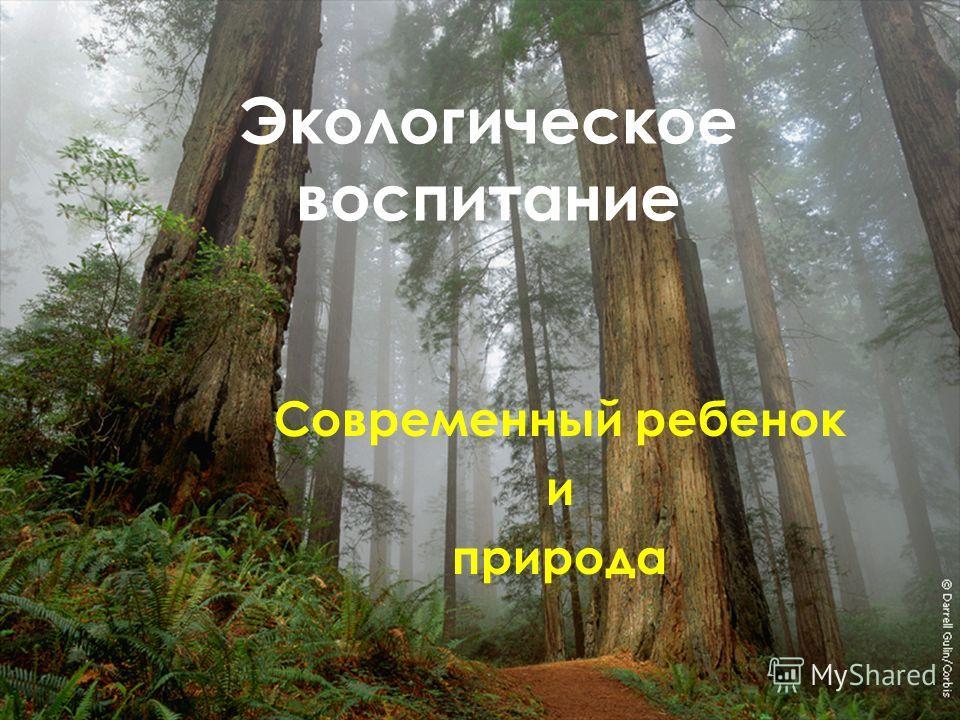 Экологическое воспитание Современный ребенок и природа