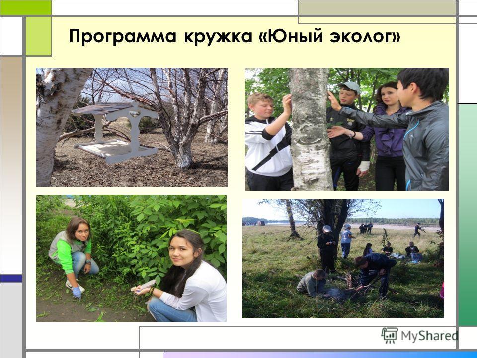 Программа кружка «Юный эколог»
