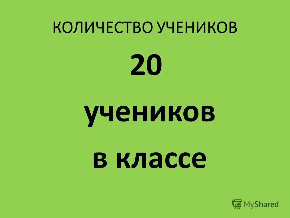 КОЛИЧЕСТВО УЧЕНИКОВ 20 учеников в классе